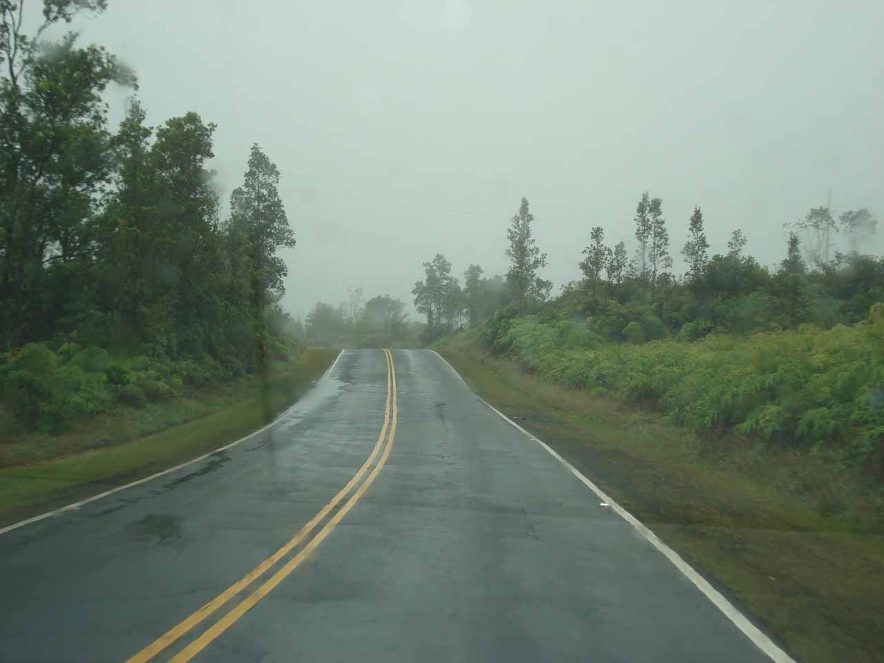 In the lush, rainy part of Saddle Road