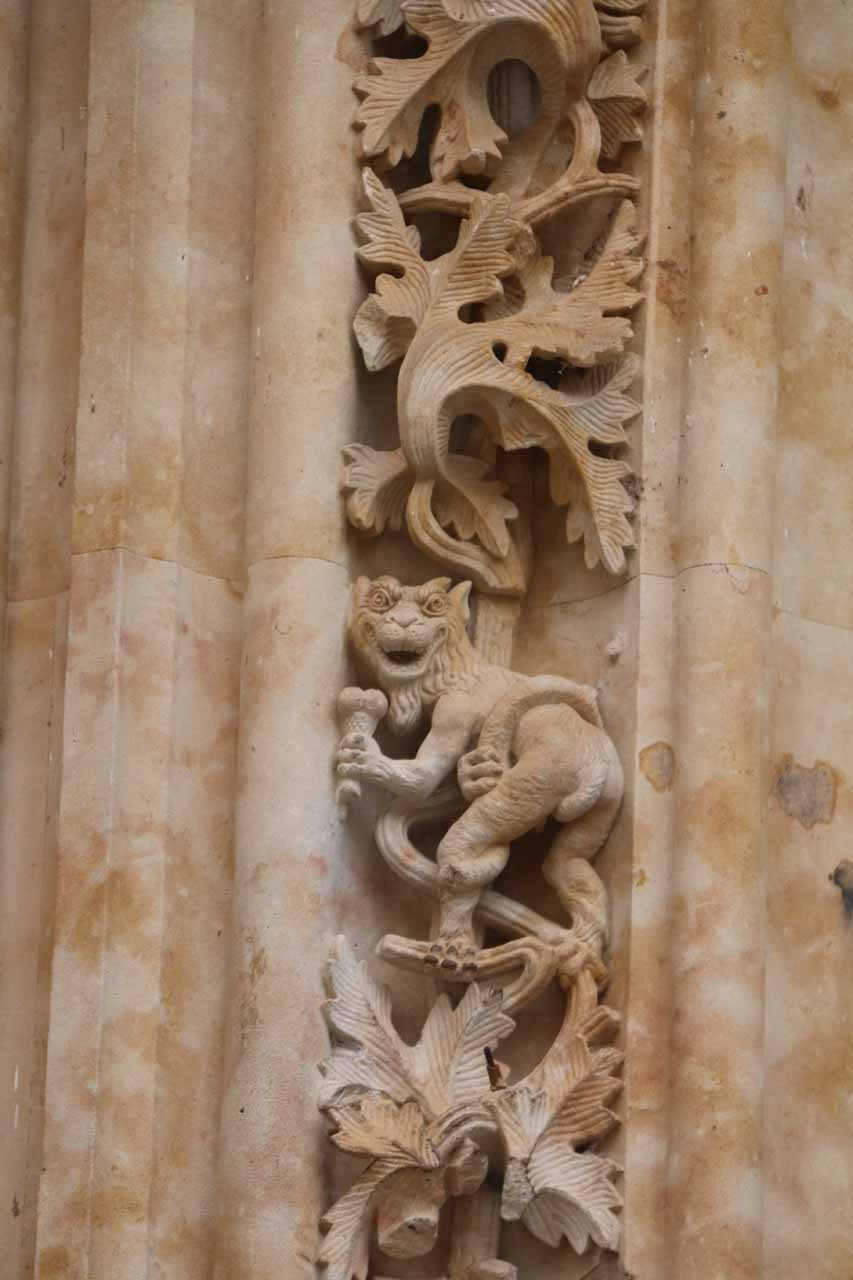 Checking out the dragon grabbing its own tail or an ice cream or a microphone; near the astronaut at the New Cathedral in Salamanca