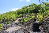 Saleaula_Lava_Fields_058_11152019