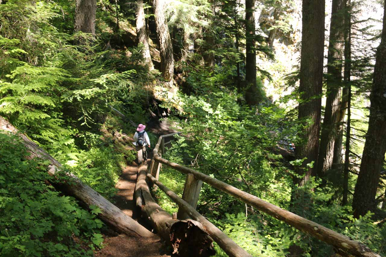 Mom continuing down the descending trail leading closer to the base of Salt Creek Falls