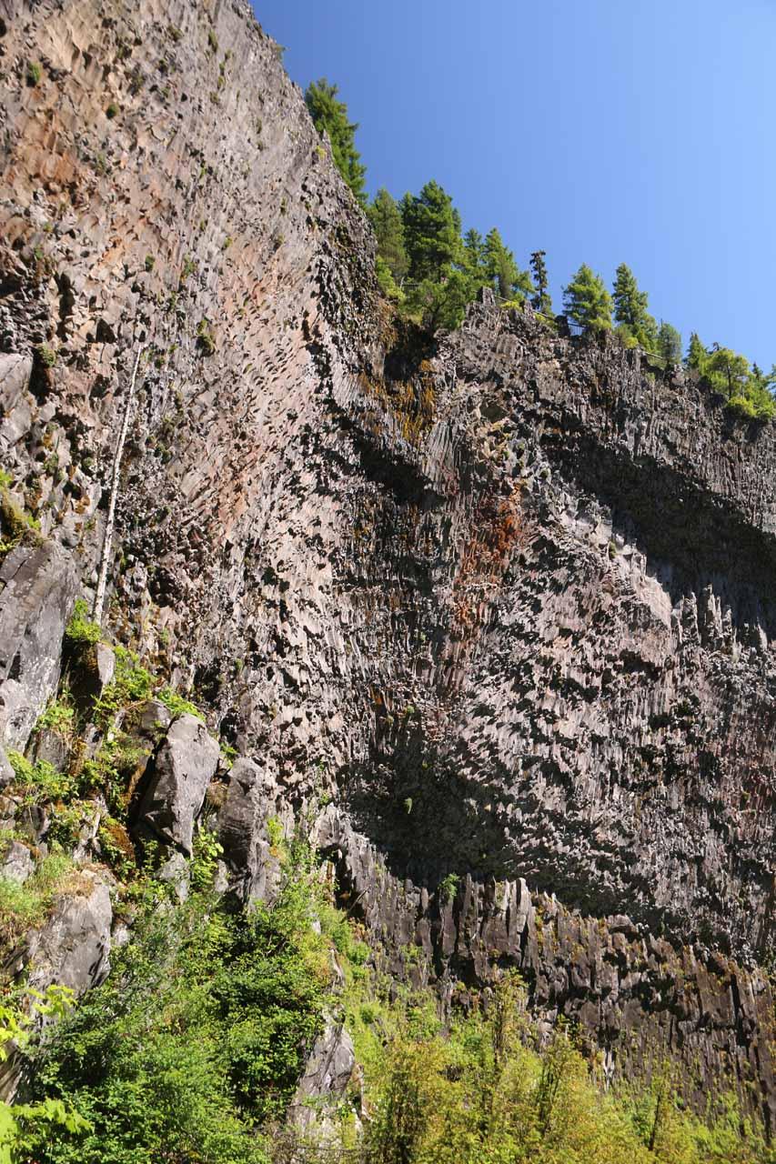 A closer examination of the pronounced basalt cliffs flanking Salt Creek Falls
