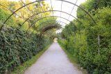 Salzburg_518_07032018 - Checking out some of the hedged archways where the Von Trapp kids and Julie Andrews were dancing within in the Sound of Music at the Mirabell Gardens in Salzburg