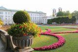 Salzburg_520_07032018 - Looking towards other attractive flowers in the Mirabell Gardens in Salzburg