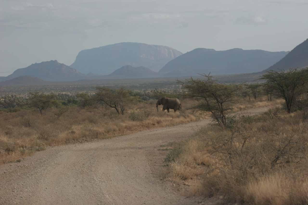 Leaving Samburu