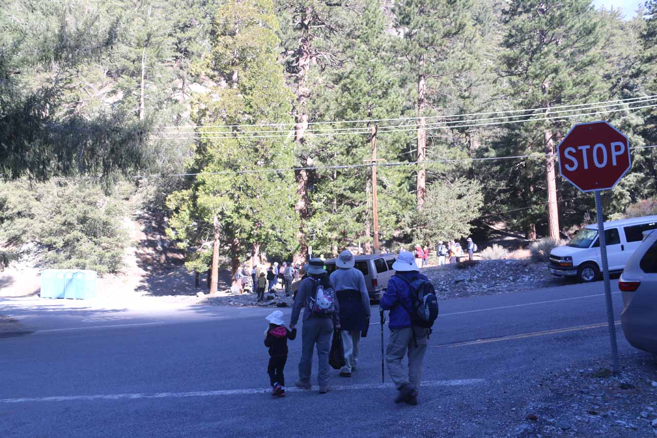 The family crossing Mt Baldy Road to get to the trailhead