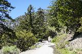San_Antonio_Falls_008_05082020 - There were actually quite a few people (without masks I might add) hiking to San Antonio Falls during our May 2020 visit despite numerous signs saying that 'All Baldy Trails Closed' and 'All Parked Vehicles Will Be Towed'