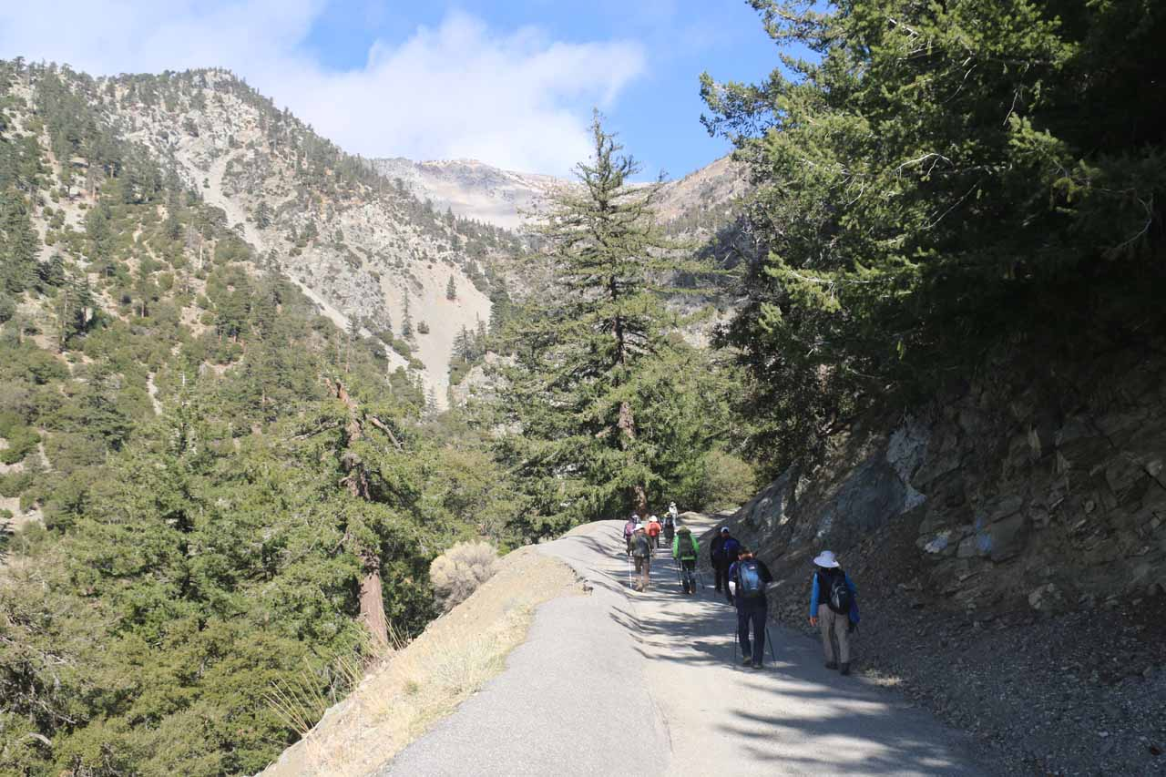 Overtaken by the tail end of a large group of Korean seniors seeking to summit Mt Baldy on the same trail as San Antonio Falls