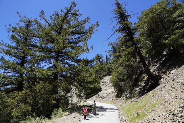 San_Antonio_Falls_026_05082020 - Julie and Tahia hiking on Falls Road en route to San Antonio Falls
