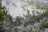 San_Antonio_Falls_047_05082020 - Another focused look at the uppermost drop that we could see of San Antonio Falls during our May 2020 visit, which was typically covered our blended in with snow in most of our prior visits so we hadn't really noticed it before