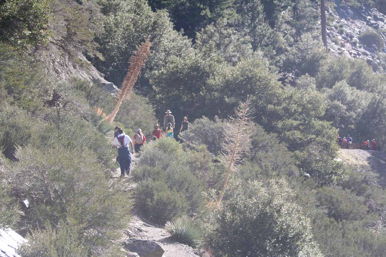 The next group of hikers approaching the base of San Antonio Falls