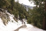 San_Antonio_Falls_16_040_01162016 - Looking back at the family as they were catching up to me on the snow-covered road and trail towards San Antonio Falls