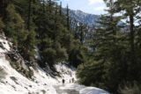 San_Antonio_Falls_16_107_01162016 - Getting through the snow on Falls Road on the return hike again