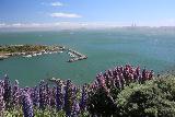 San_Francisco_179_04202019