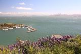 San_Francisco_188_04202019