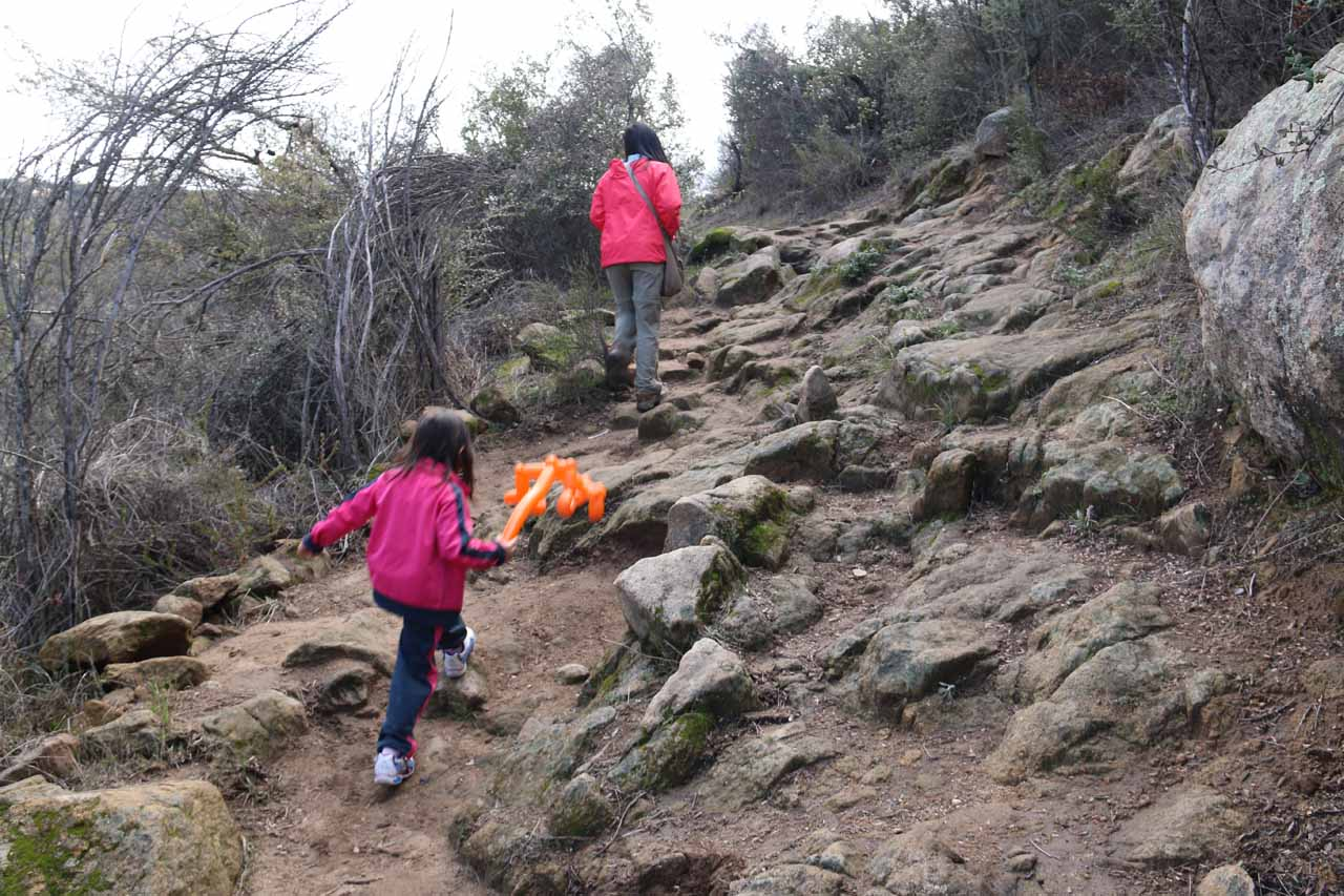 Tahia navigating through some of the rocky sections of the San Juan Loop Trail