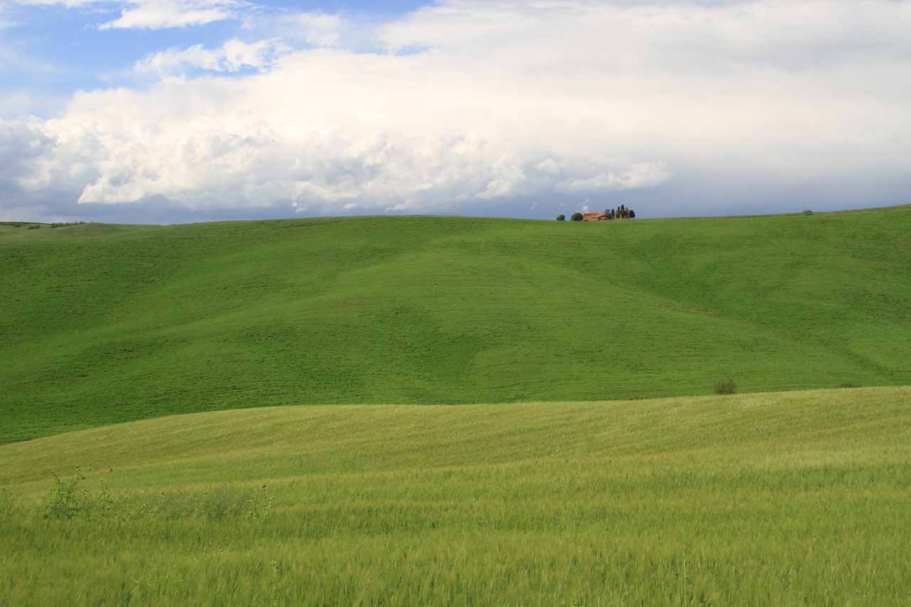 The quintessential Tuscan scenery at San Quirico d'Orcia