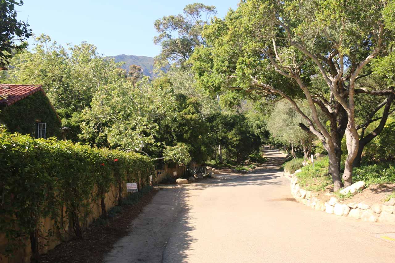 The San Ysidro Trail then followed Park Lane West where no parking signs were plentiful