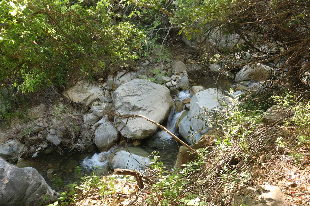 The San Ysidro Trail pretty much followed the San Ysidro Creek, which had healthy flow and contained many minor cascades like this one