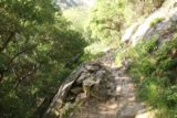 San_Ysidro_Falls_029_04012017 - The San Ysidro Trail climbed more steeply the further up I went