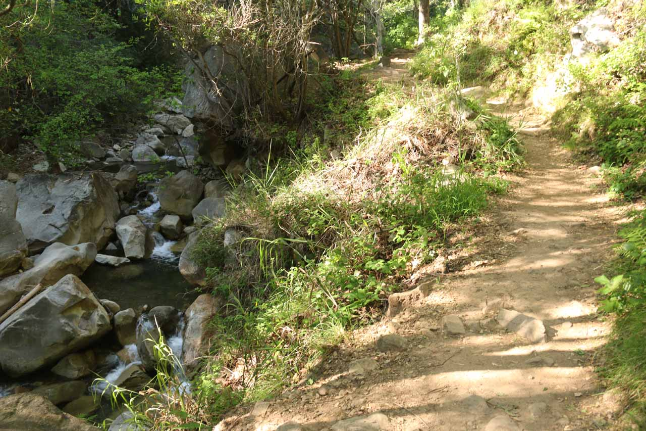 San Ysidro Creek flanking much of the San Ysidro Trail