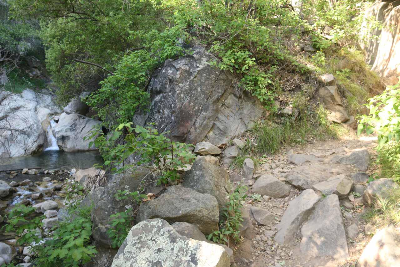 Context of a minor cascade on San Ysidro Creek alongside the San Ysidro Trail