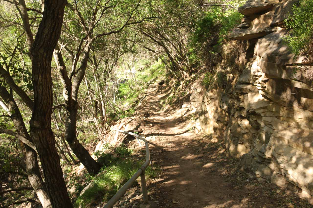 The San Ysidro Trail was for the most part in shade, which made for a relatively comfortable hike