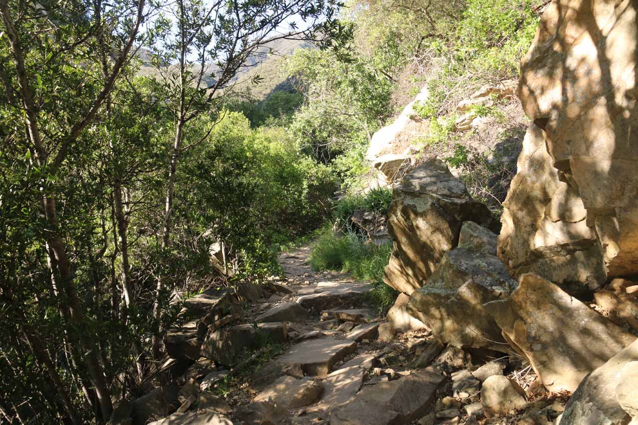 The San Ysidro Trail was increasingly rockier the higher up I went
