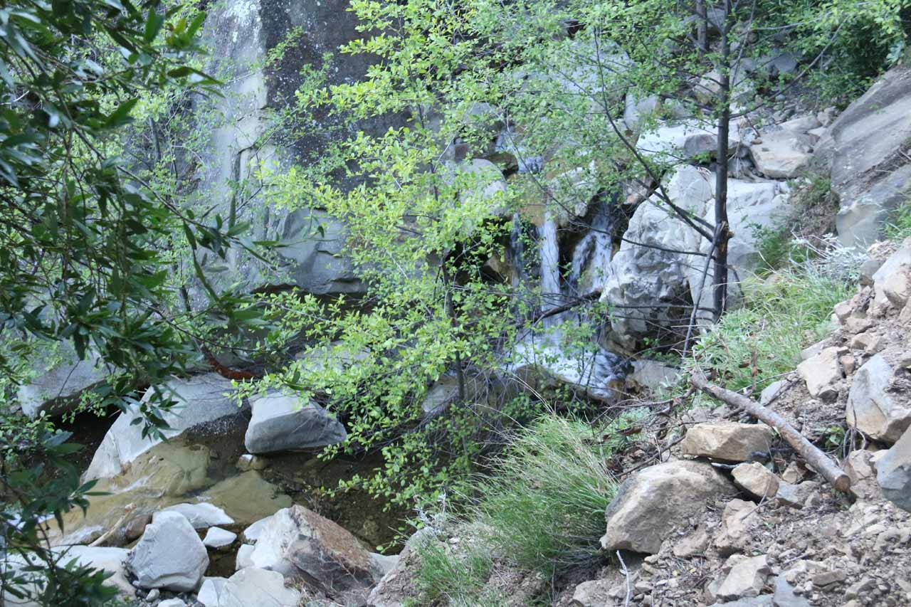 Looking through foliage from the San Ysidro Trail towards more attractive minor waterfalls on San Ysidro Creek
