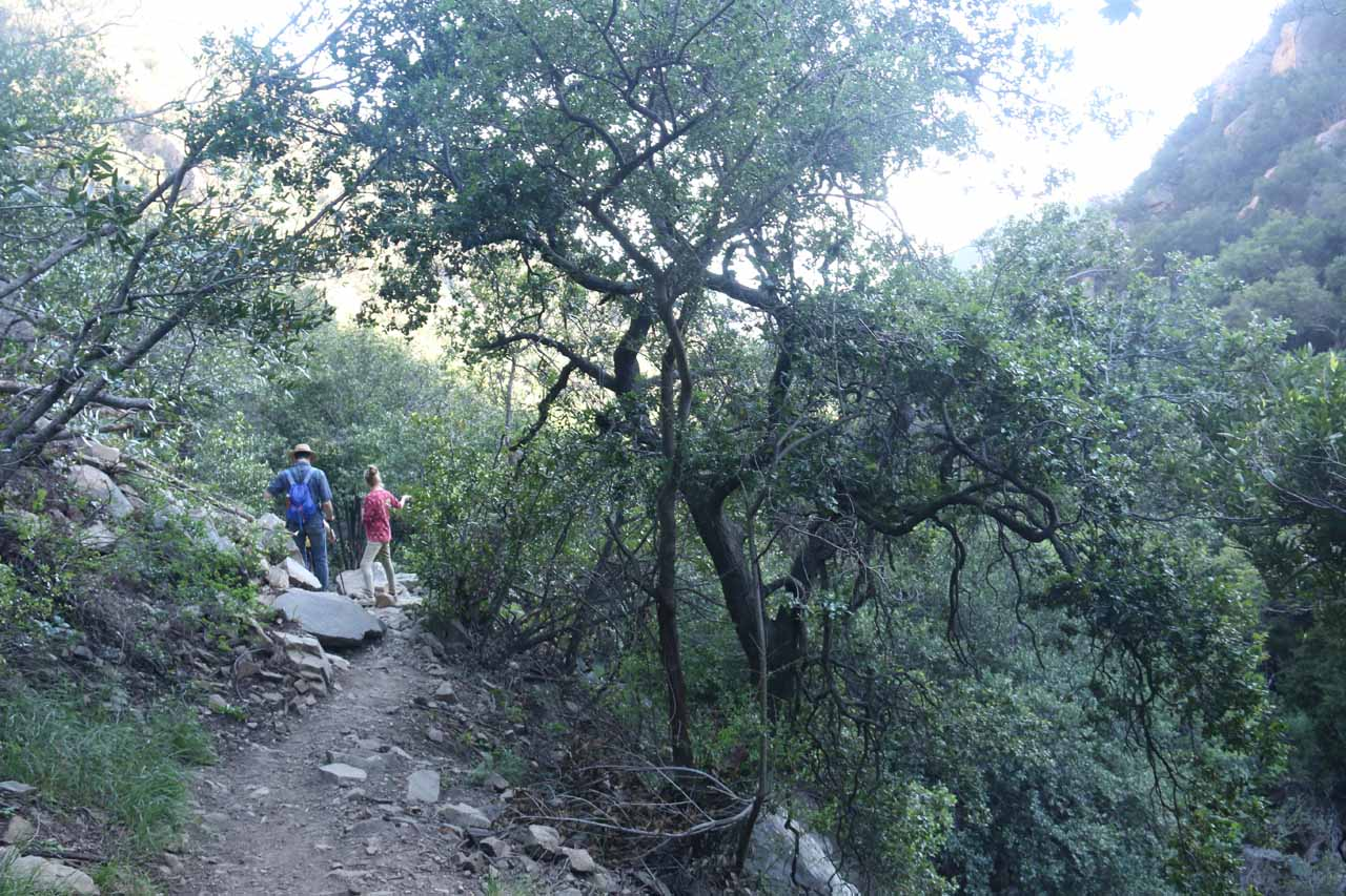 Looking back at a group of hikers chatting along the San Ysidro Trail, including the couple whom I passed where the husband was struggling