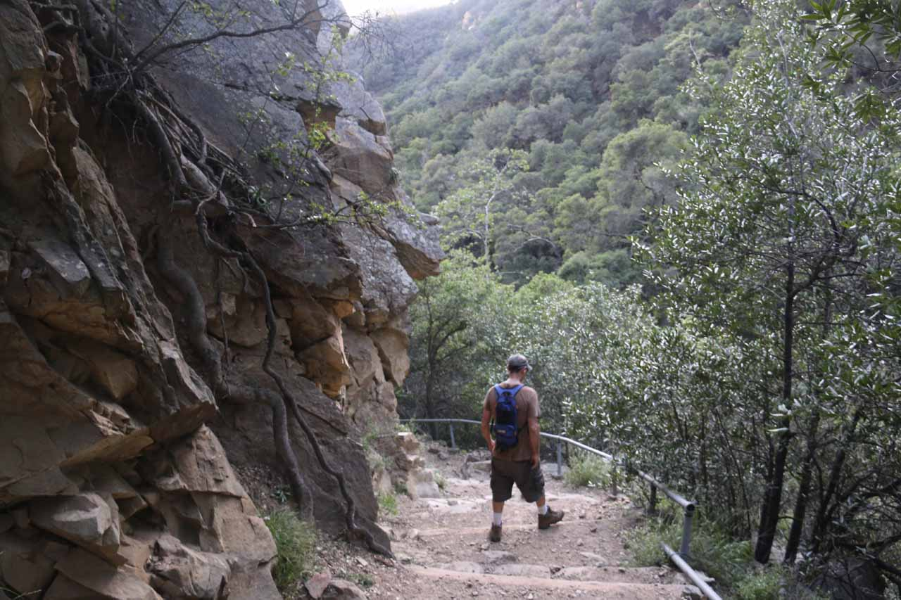 Keeping this hiker company for a while as we were making our return hike to the San Ysidro Trailhead