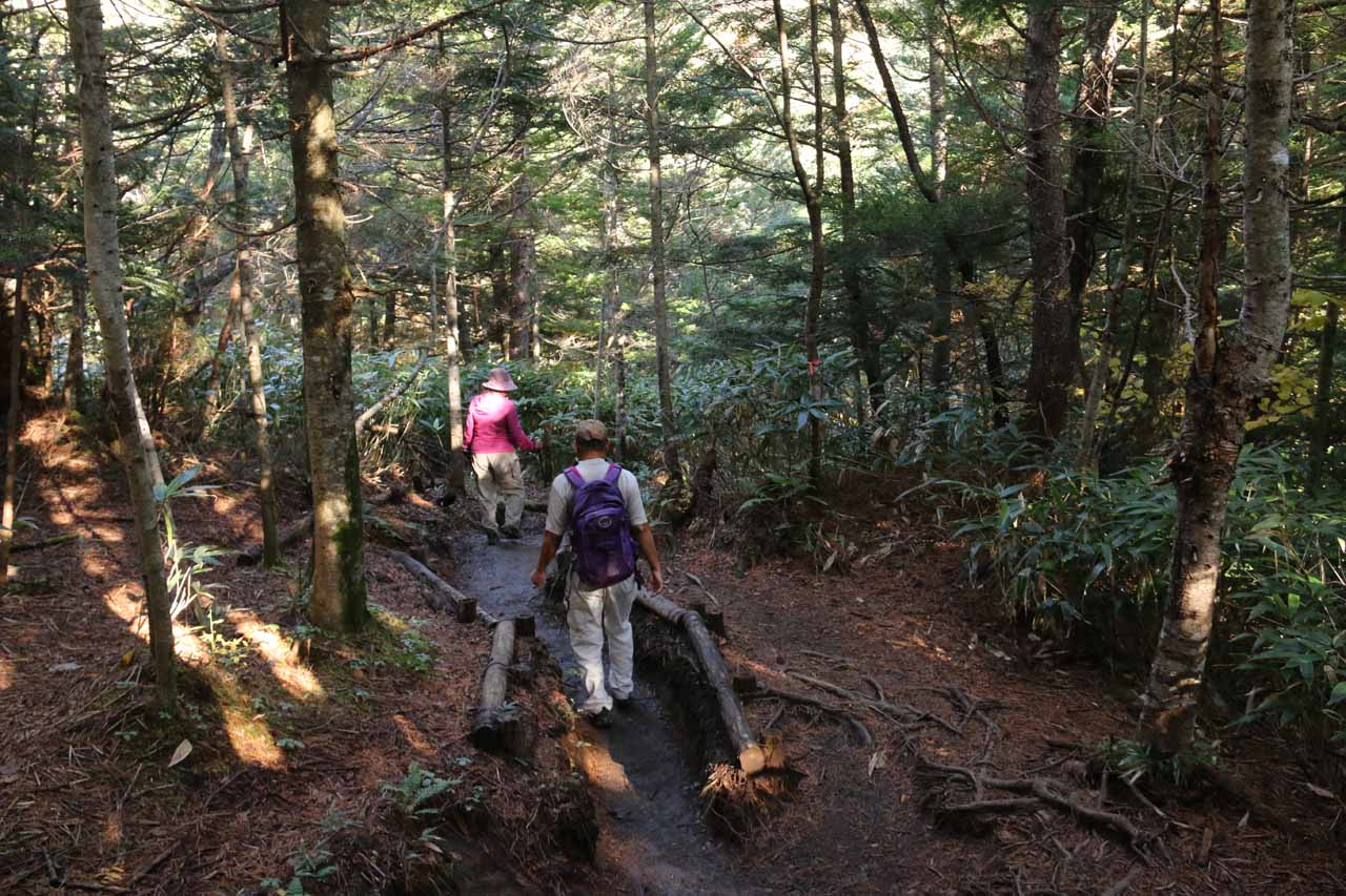 Mom and Dad continuing down the forested trail towards the Sanbon Falls