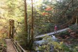 Sanbon_Falls_088_10192016 - Looking back at the suspension bridge right at the brink of one of the intermediate cascades on the Koonogawa as we were hiking back to the trailhead