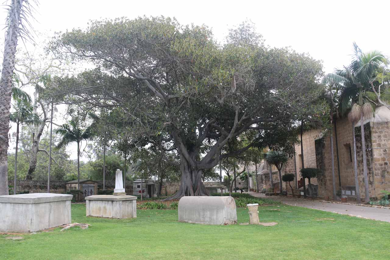 The cemetery near the church