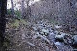 Santa_Paula_Canyon_053_02052021 - Following along the Santa Paula Creek after making the fourth crossing