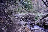 Santa_Paula_Canyon_061_02052021 - After the contraption, the Santa Paula Canyon Trail briefly continued to follow Santa Paula Creek before the canyon started to open up