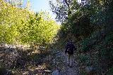 Santa_Paula_Canyon_083_03052021 - Mom and Dad on a shadier part of the Santa Paula Canyon Trail shortly after making the fifth crossing of Santa Paula Creek
