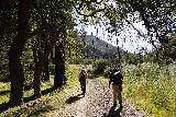 Santa_Paula_Canyon_337_03052021 - Mom and Dad ascending from the Big Cone Camp as we made our way back to the Santa Paula Canyon Trailhead