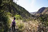 Santa_Paula_Canyon_340_03052021 - Dad and Mom on the long descent from Big Cone Camp back down towards Santa Paula Creek