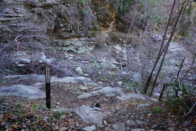 Santa_Paula_Canyon_426_02052021 - This was the signed creek crossing just below the Big Cone Camp