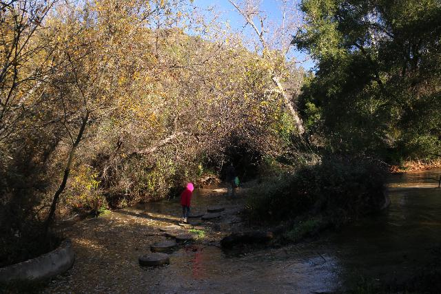 Santa_Ynez_Falls_021_01192019 - Julie and Tahia traversing the first of many creek crossings on the way to Santa Ynez Falls, but this one had circular steps to help us across
