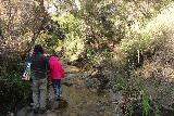 Santa_Ynez_Falls_061_01192019 - Tahia and Julie figuring out how to stay dry as the Santa Ynez Falls trail pretty much followed, crossed, and coincided with the creek itself
