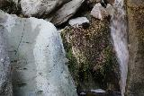Santa_Ynez_Falls_162_01192019 - A rope with a rock and etched footholds next to Santa Ynez Falls