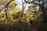 Santa_Ynez_Falls_180_01192019 - Tahia and Julie hiking back along the Santa Ynez Canyon Trail en route to the trailhead