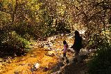 Santa_Ynez_Falls_182_01192019 - Tahia and Julie going back across some of the familiar stream crossings to return to the trailhead for Santa Ynez Falls
