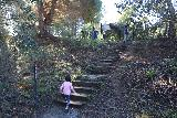 Santa_Ynez_Falls_191_01192019 - Julie and Tahia climbing back up the steps to the residential street and our parked car to end our Santa Ynez Falls adventure