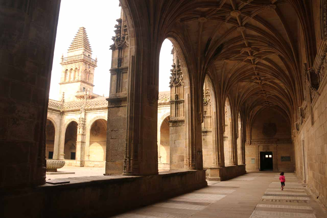 Tahia walking around the perimeter of the courtyard within the Museo de Catedral in Santiago de Compostela