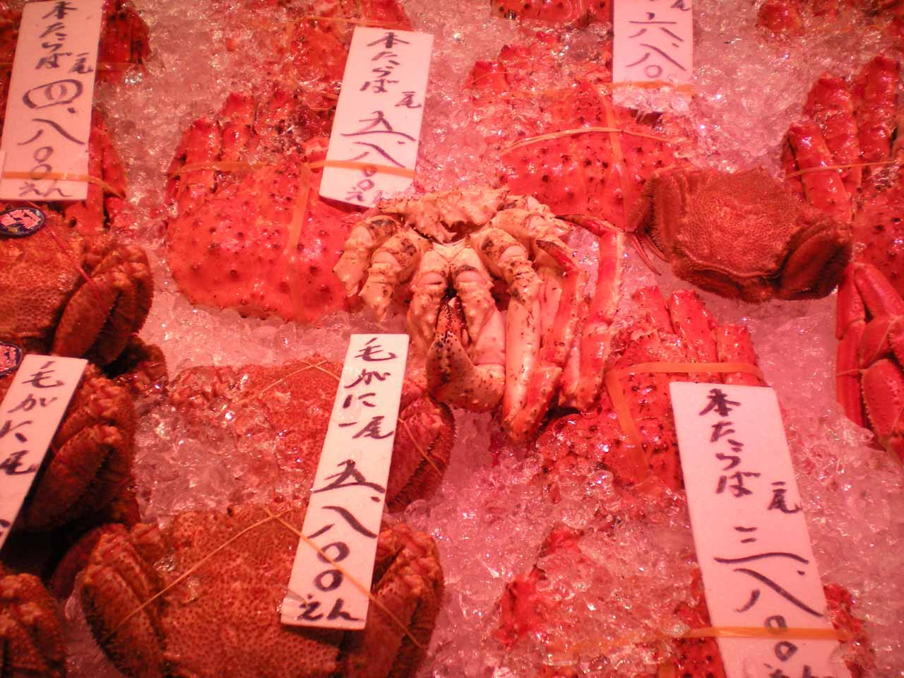 Some fresh crabs for sale