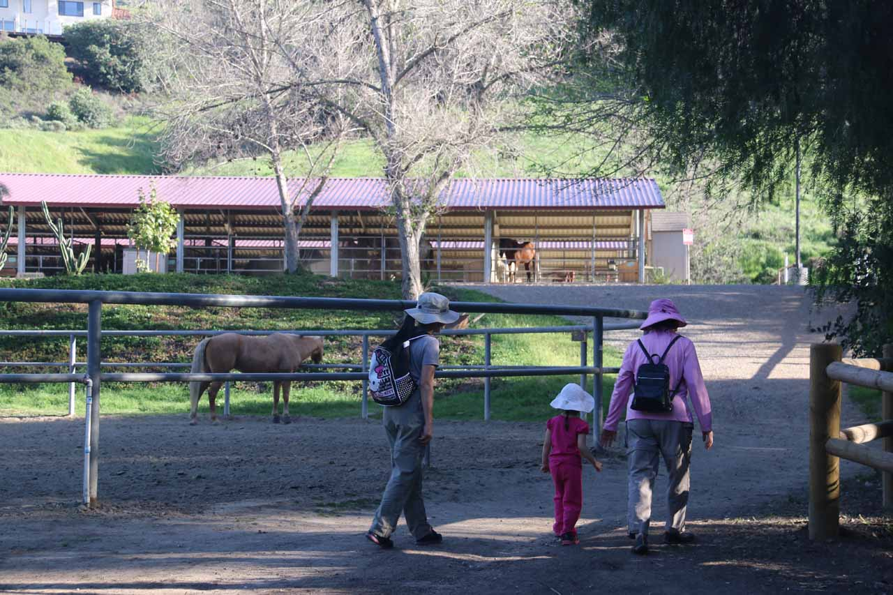 The family approaching the Equestrian area
