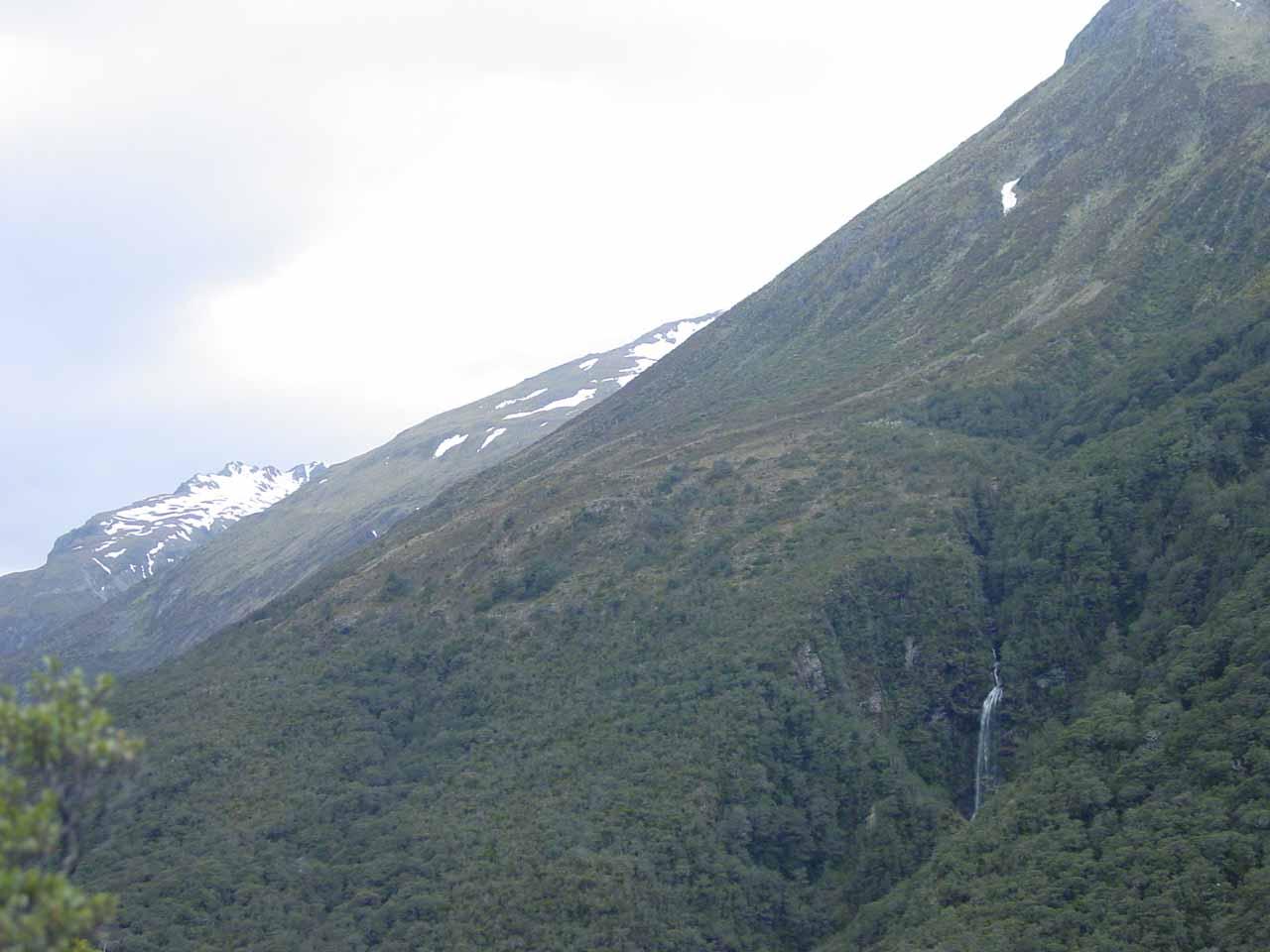 Contextual look towards Bridal Veil Falls from Scott's Track