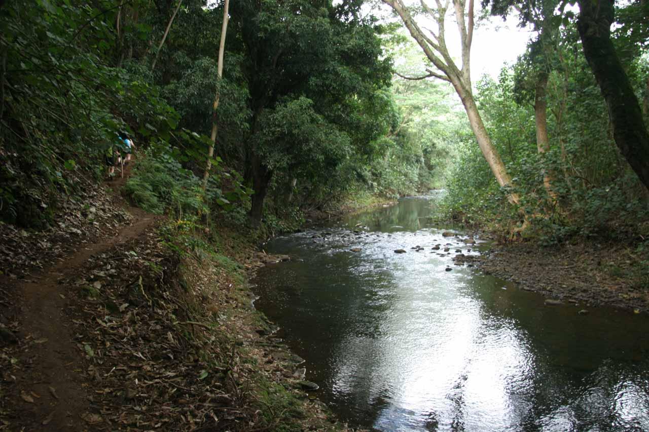 Walking along the Wailua River